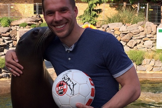 Arsenal's Lukas Podolski Plays Head Tennis with a Sea Lion