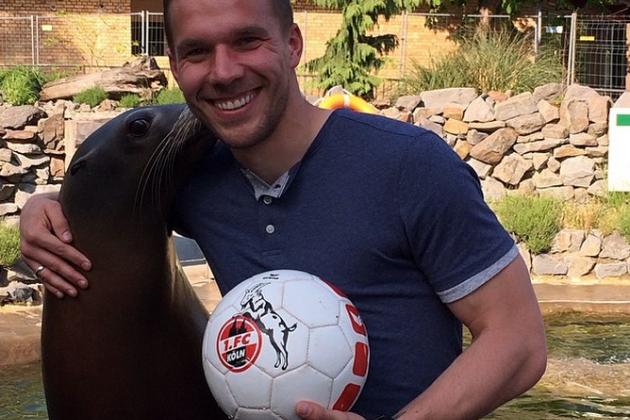 Arsenal's Lukas Podolski Plays Head Tennis with a Sea Lion