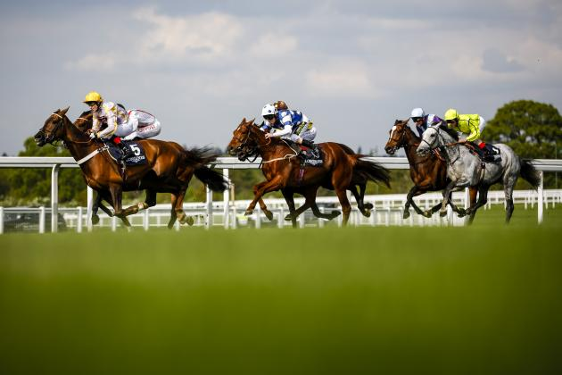 Victoria Cup 2014: Ascot Race Date, Runners, Odds and Post Positions