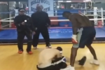 Watch: Boxing Champ Beats Up Cyber Bully