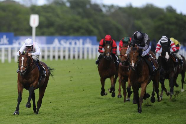 Victoria Cup 2014: Winner, Payouts and Order of Finish for Ascot Race