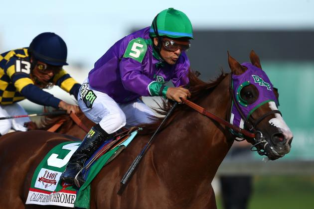 Preakness Field 2014: Pedigree Info and Predictions for Horses in Stakes Lineup