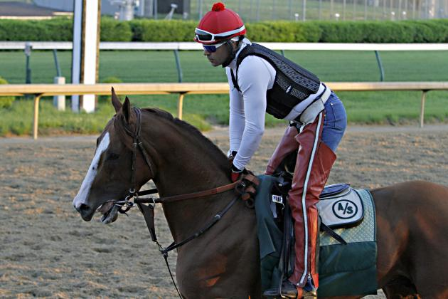 Preakness Contenders 2014: Compelling Odds for Favorites in This Year's Field
