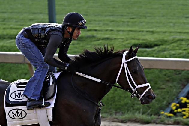 Preakness Field 2014: Post Positions and Updated Odds for All Horses