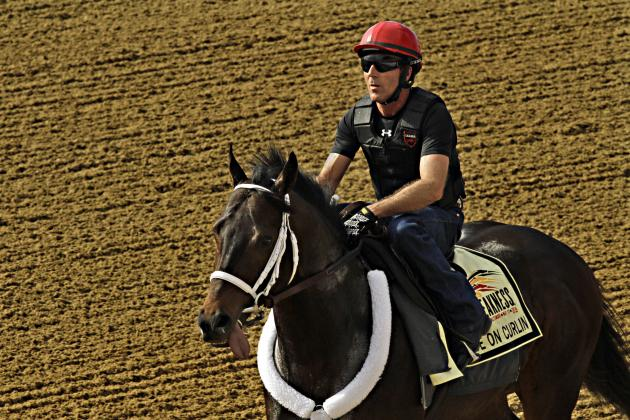Preakness Odds 2014: Top Picks, Updated Vegas Lines for 139th Race