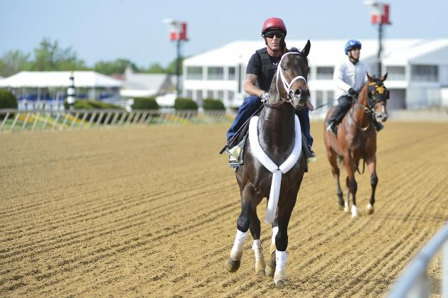 2014 Preakness: Mobile Live Stream Info, Race Schedule for Pimlico