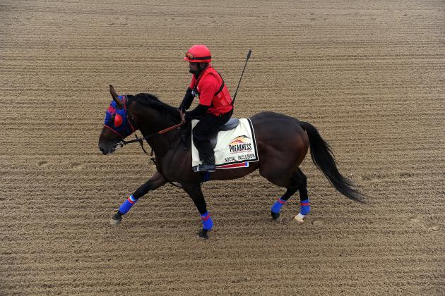 2014 Preakness Field: Entries List, Betting Lines and Picks