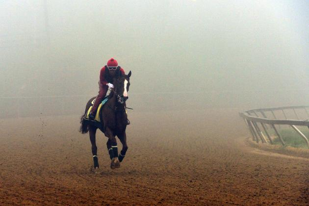 Preakness Entries 2014: Latest Purse Payout, Vegas Betting Odds and Field Lineup