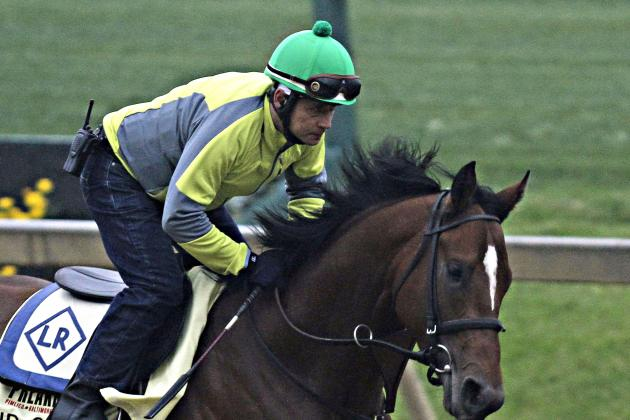 Preakness Picks 2014: Examining Latest Vegas Predictions and Odds