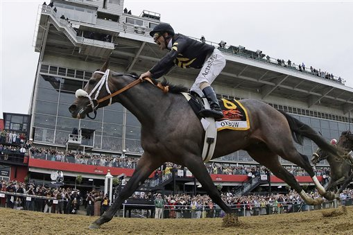 Reliving 2013 Preakness Winner Oxbow's Race Ahead of California Chrome's Pursuit