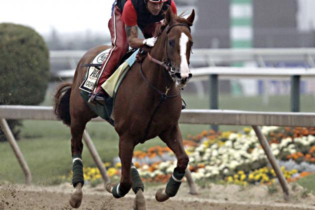 California Chrome Won't Be Seriously Tested in 2014 Preakness