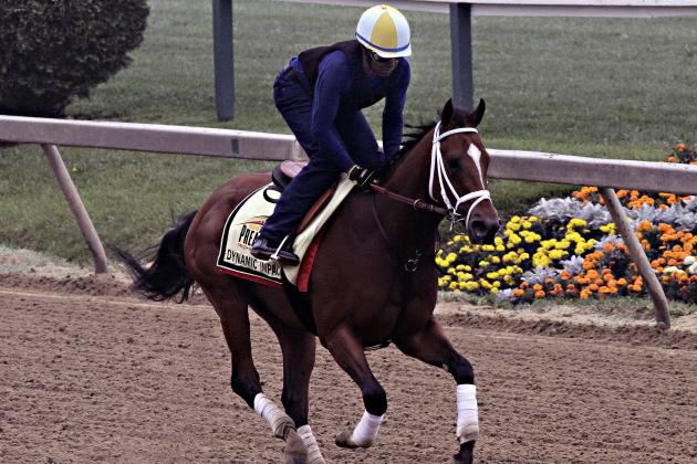 2014 Preakness Field: Lineup for Top Undercard and Stakes Races at Pimlico