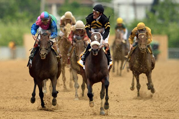 Preakness Field 2014: Final Outlook for Undercard and Stakes Lineup at Pimlico