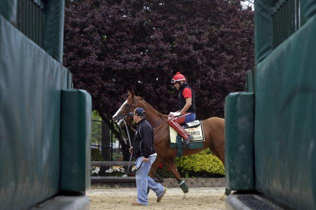 Preakness Picks 2014: Predictions and Odds for All Horses Before 139th Race