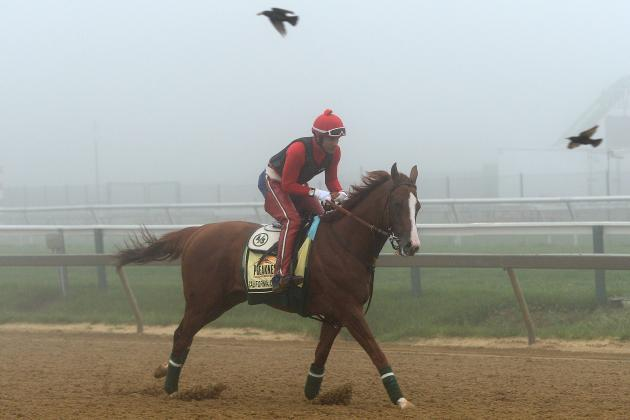 Preakness 2014 Predictions: Final Picks on Race-Day Odds