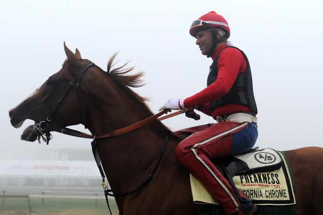 Preakness Race 2014: Weather Forecast, Horse Odds and Jockey Info