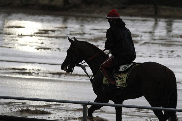 Preakness TV Schedule 2014: NBC TV Info, Start Time and Race Live Stream