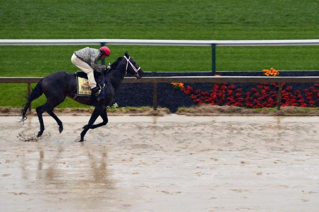 Preakness 2014 Post Time: NBC TV Start Time, Final Predictions and More