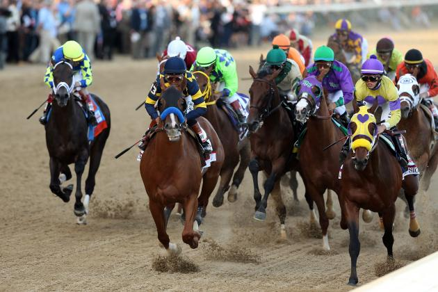 Preakness Field 2014: Final Vegas Odds and Projections for Entry List