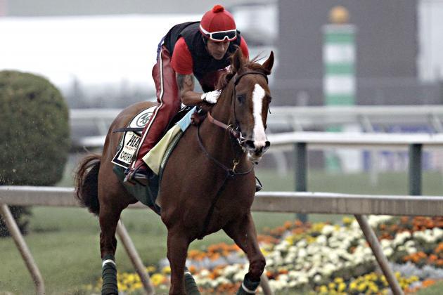 Preakness 2014 Lineup: Undercard and Main Race Picks for All Entries in Field
