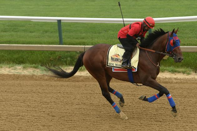 Preakness 2014: Final Vegas Betting Odds, Race Predictions and More
