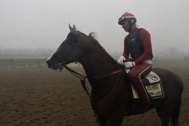 Preakness 2014: Last-Minute Predictions, Odds for Entire Field
