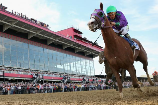 California Chrome Is Poised to Seize Triple Crown After Convincing Preakness Win