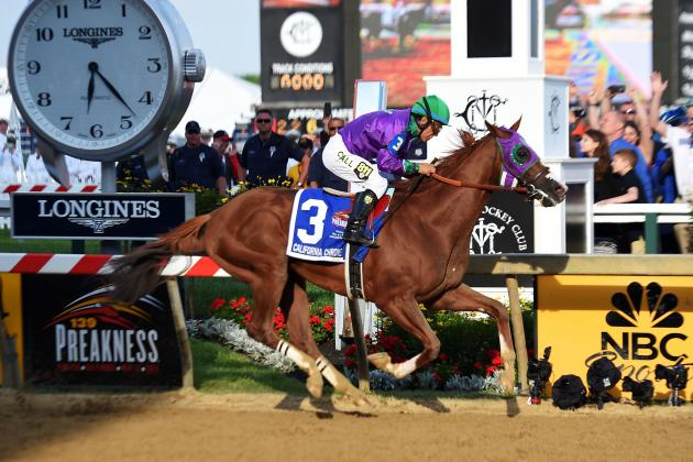 California Chrome and Victor Espinoza: Pimlico Payout, Pedigree Info and More