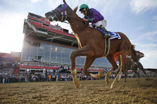 2014 Preakness: Final Race Chart, Finishing Times and Purse