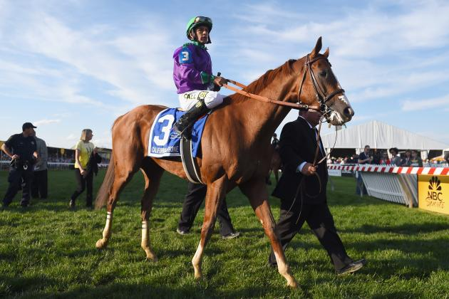 Triple Crown 2014: Examining California Chrome's Chance at History in Belmont