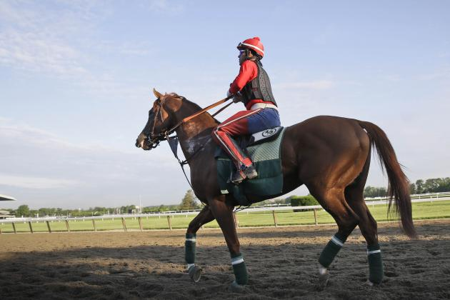 Triple Crown 2014: Latest Odds for California Chrome at Belmont Stakes