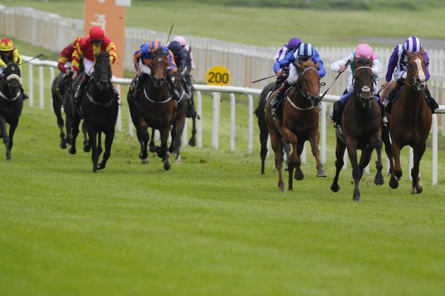 Irish 2000 Guineas 2014: Winner, Payouts and Order of Finish