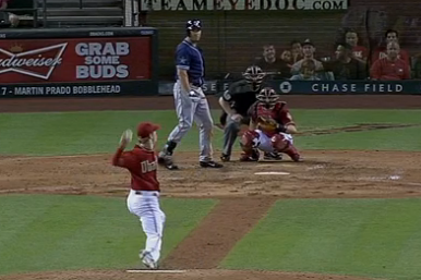 Bird Flies in Front of Pitch, Barely Avoids Randy Johnson Moment in D-Backs Game