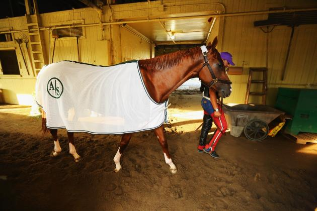 California Chrome: Belmont Stakes Will Be Hardest Leg of 2014 Triple Crown Chase