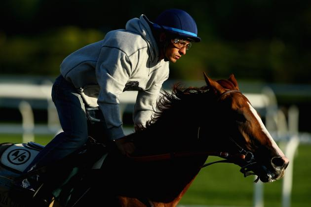 Belmont Stakes 2014: Complete Odds for Final Leg of Triple Crown