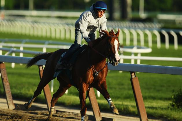 Triple Crown 2014: Ranking California Chrome's Competition at Belmont Park