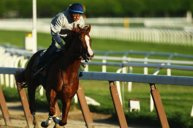 Belmont Stakes 2014: Horses, Favorites and Contenders for This Year's Field