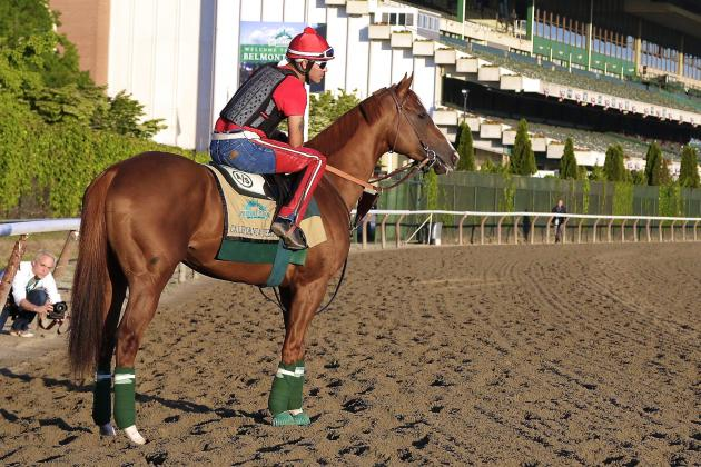 California Chrome Owners Sign Sponsorship Deal with Skechers