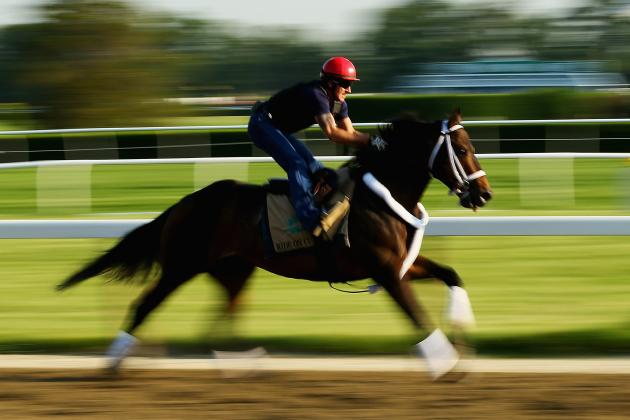 Belmont Stakes Odds 2014: Latest Vegas Betting Lines Before Post Position Draw