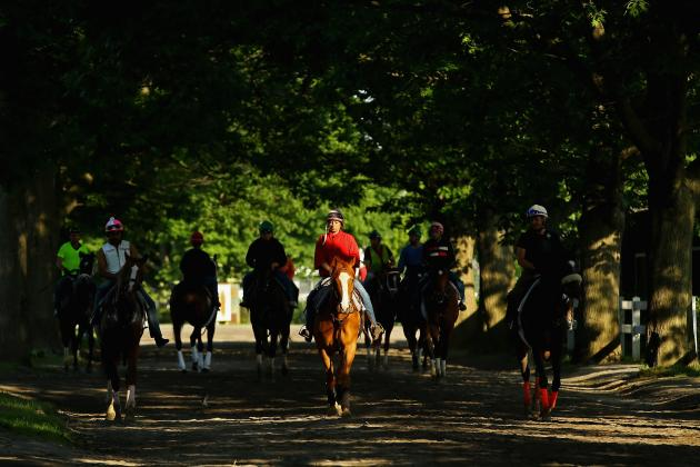 2014 Belmont Stakes: Viewing Info and Predictions for Most Intriguing Horses