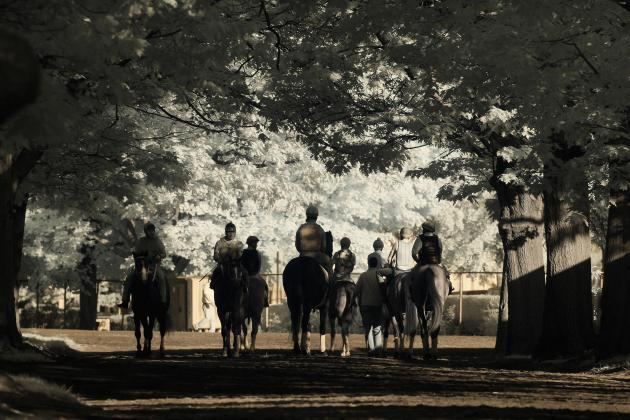 Belmont Stakes Draw 2014: Start Time, Entry Lineup and TV Schedule