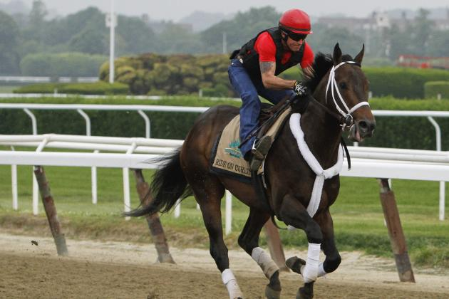 Belmont Stakes Field 2014: Post Positions and Updated Odds for All Horses