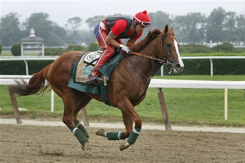 2014 Belmont Stakes: Post Positions and Odds for Horse Entries in 146th Race