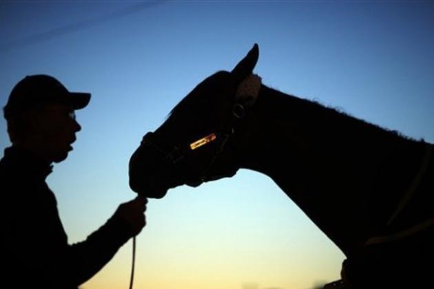 Belmont Stakes 2014: Breaking Down Best Dark Horses in Triple Crown Finale