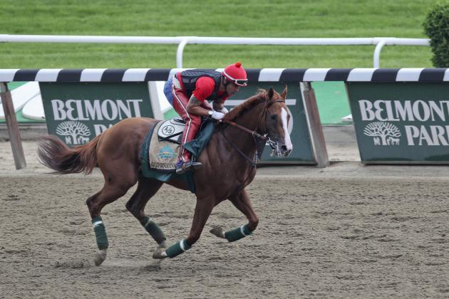 Belmont Stakes 2014 Horses: Full Lineup, Favorites and Sleepers for 146th Race