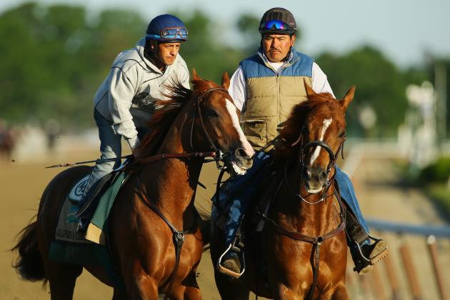 2014 Belmont Stakes Field: Entries List, Betting Lines and Picks for Elmont Race