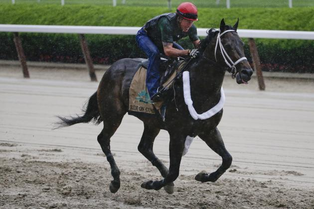 Belmont Stakes 2014 Odds: Latest Vegas Betting Lines, Picks and Predictions