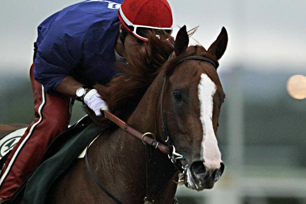 Belmont Stakes 2014: Updated Weather Forecast, Odds and Payout Info