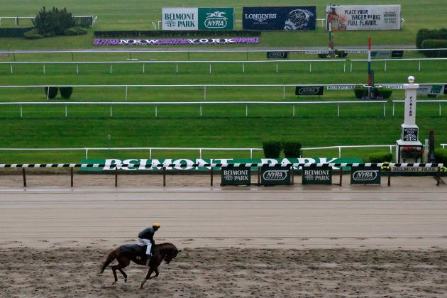 Belmont Stakes Entries 2014: Latest Purse Payout, Vegas Betting Odds and Lineup