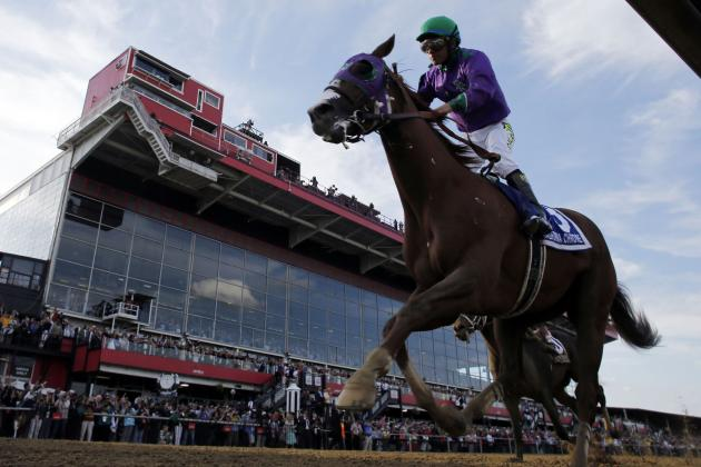 Belmont Stakes Odds 2014: Final Predictions on Latest Vegas Betting Lines